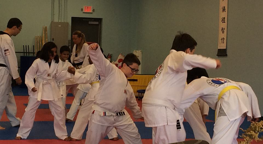 Having Fun Learning TKD